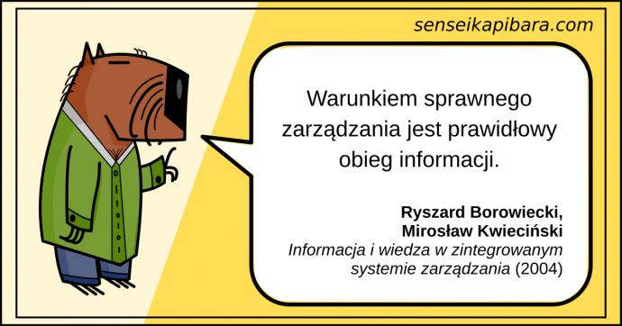 żółty - warunek sprawnego zarządzania - ryszard borowiecki mirosław kwieciński