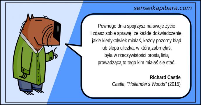 niebieski - każde doświadczenie - richard castle