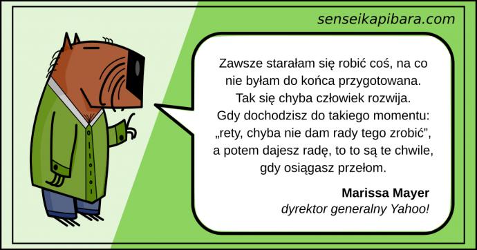 zielony - staram się robić - marissa mayer