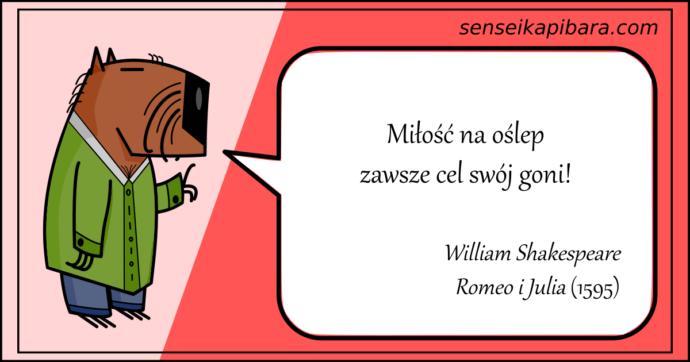czerwony - miłość na oślep - william shakespeare