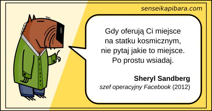 żółty - wsiadaj do statku kosmicznego - sheryl sandberg