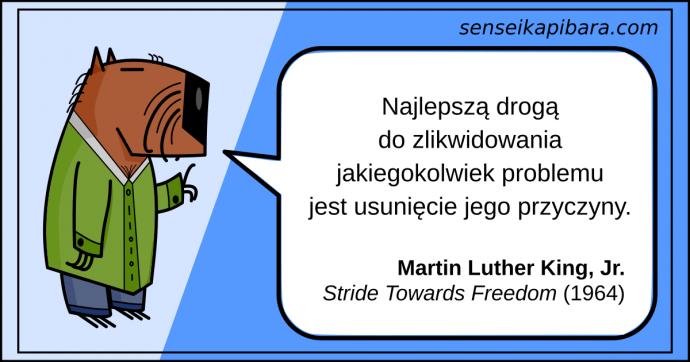 niebieski - Najlepszą drogą do zlikwidowania problemu, jest usunięcie jego przyczyny - Martin Luther King