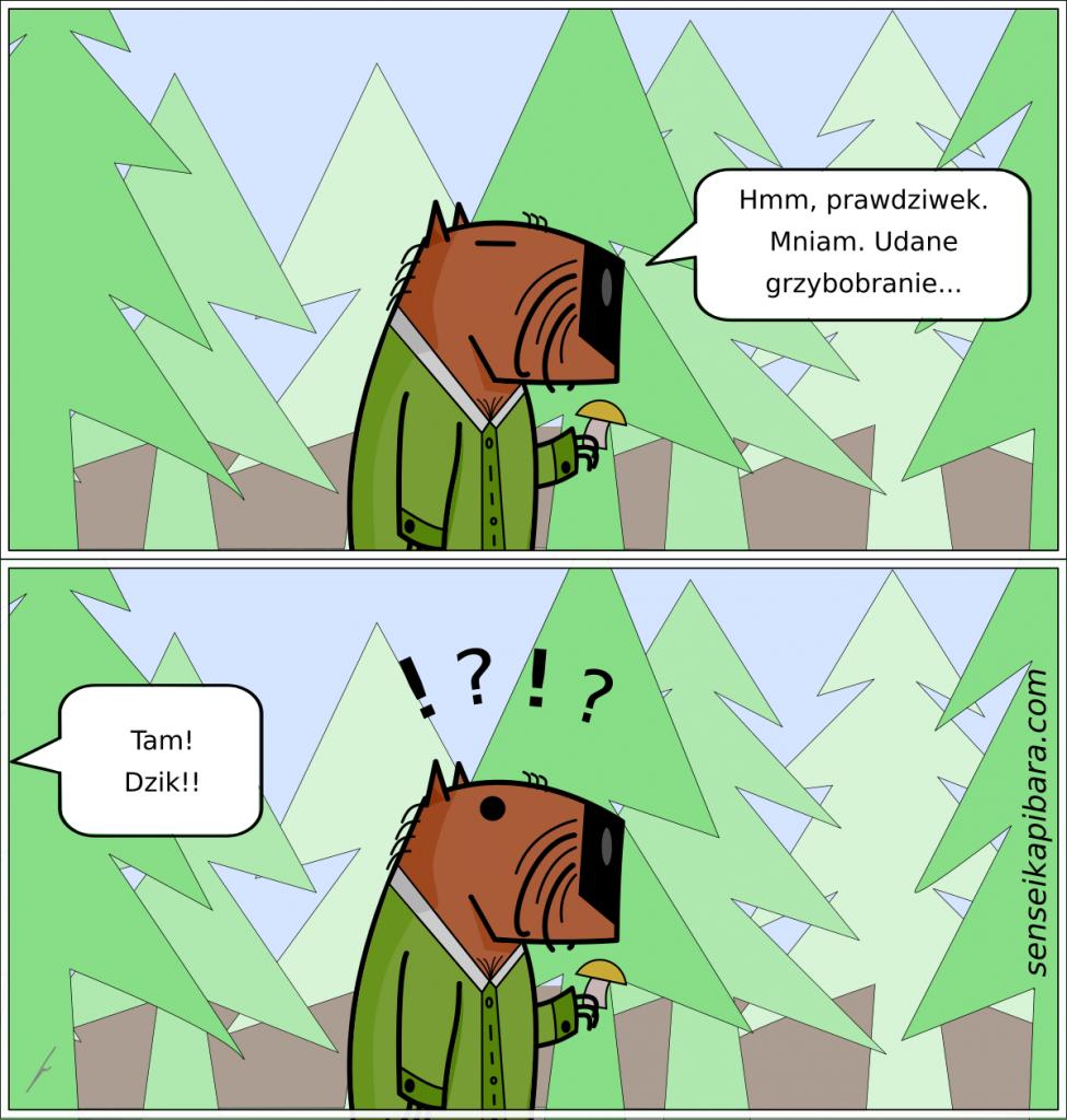 Komiks Kapibara